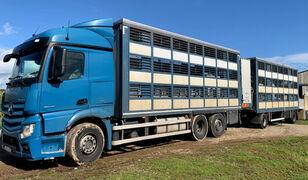 truk pengangkut hewan MERCEDES-BENZ Actros 2548 for pigs transport + trailer pengangkut ternak