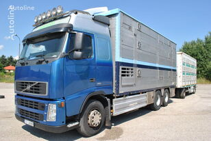 truk pengangkut hewan PEZZAIOLI FH12 480