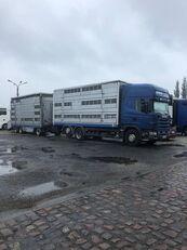 truk pengangkut hewan SCANIA 124-420 + trailer pengangkut ternak