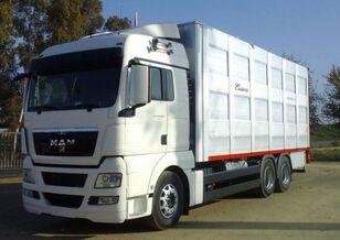 truk pengangkut hewan SCANIA R 490