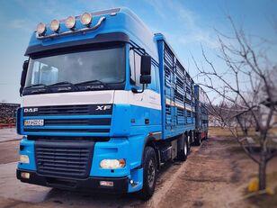 truk pengangkut hewan PEZZAIOLI + trailer pengangkut ternak