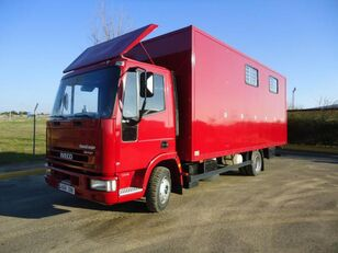 truk pengangkut kuda IVECO EUROCARGO 80 E 16