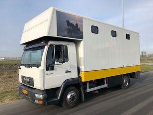 truk pengangkut kuda MAN LE8-180